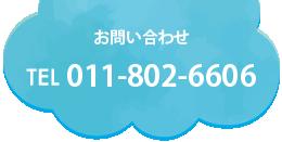 TEL:011-802-6606